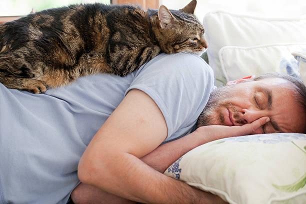 Man and old cat have faith in sleeping picture id168282788?b=1&k=6&m=168282788&s=612x612&w=0&h=zqtqlzne 1ovealugwqb 5tn 7vfef6tslxpon2ldxk=