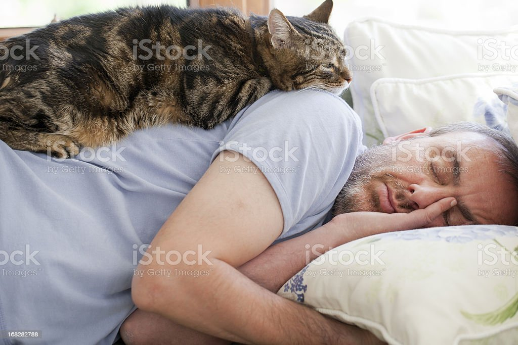 man and old cat: have faith in / sleeping stock photo