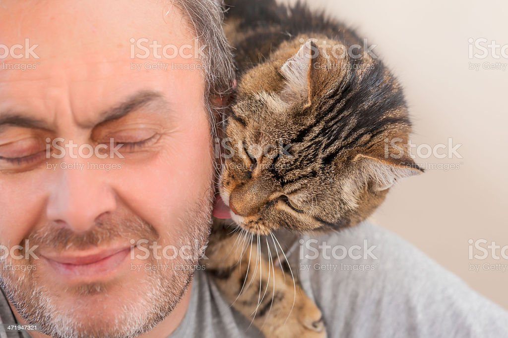 man and old cat: real Love - licking stock photo
