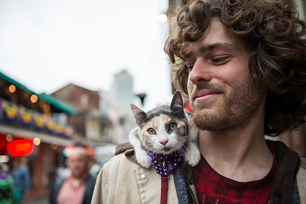 man and pet cat at mardi gras - new orleans - cat leash stock photos and pictures