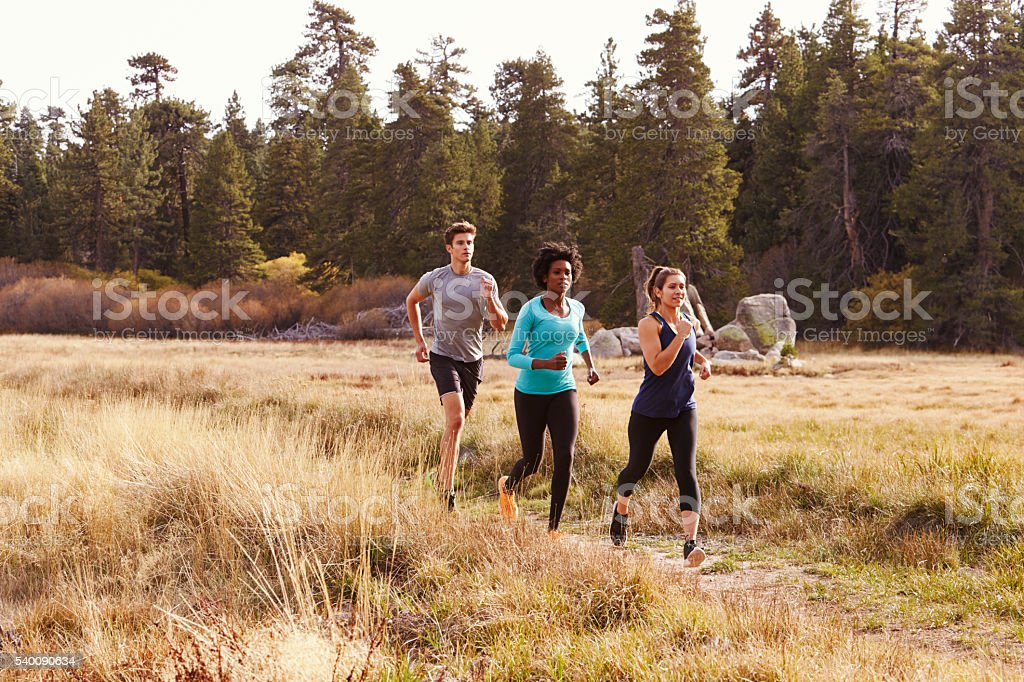 Man and two women running near a forest stock photo