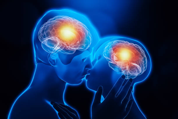 Man and woman couple kissing body chemistry. Brain activity in the limbic system. Love, emotion, interaction, partnership, neuroscience, psychology, science conceptual 3d rendering illustration. stock photo