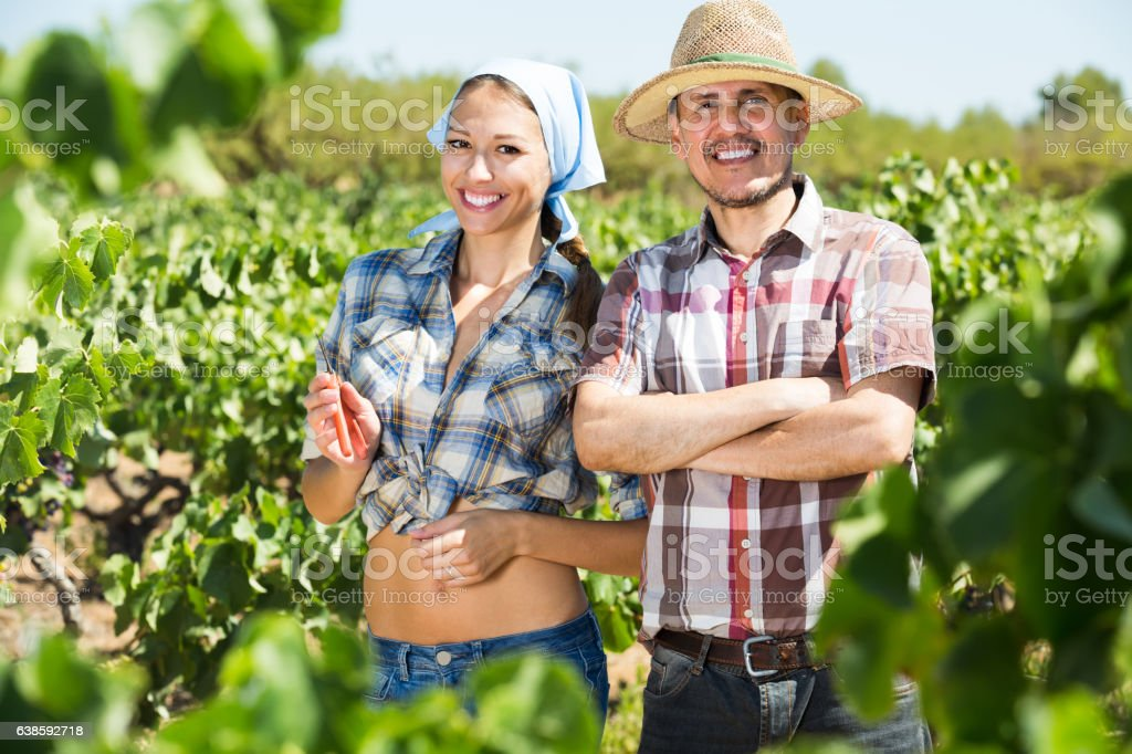 man and woman gardeners in grapes tree yard stock photo