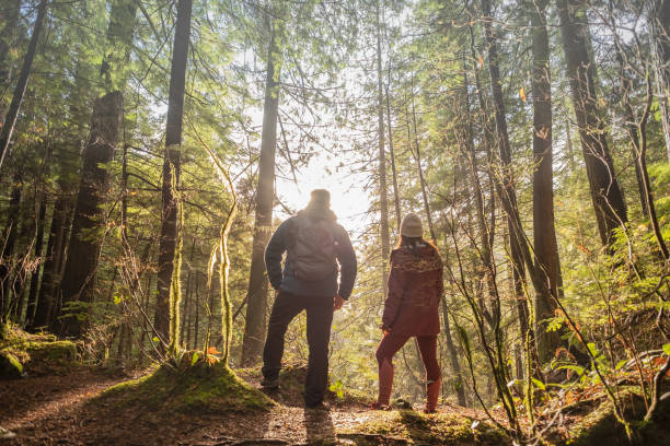 man and woman hikers enjoying view through trees in forest - forest bathing foto e immagini stock