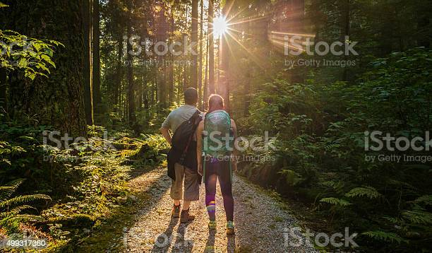 Photo of Man and Woman Hikers in Forest Admiring Sunlight Through Trees