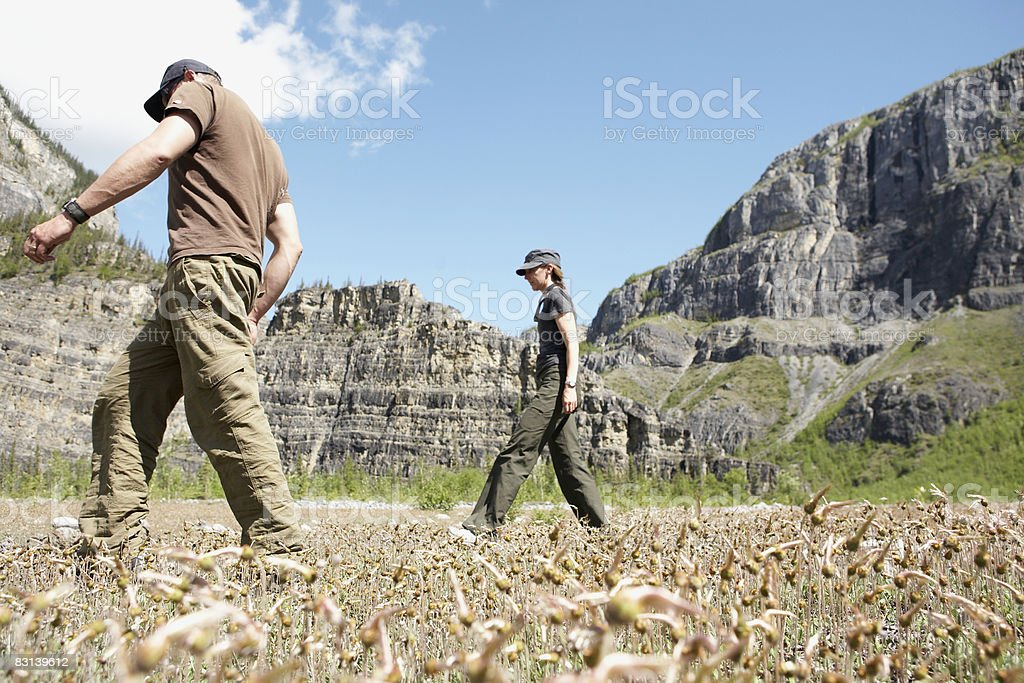 man and woman walking in valley foto stock royalty-free