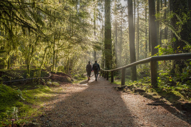 Man and Woman Walking on Forest Trail, British Columbia, Canada stock photo