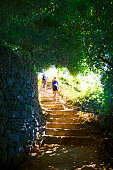 A rear view of a man and a woman as they hike up a set of very old steps that are framed by an old stone wall and overgrown bushes as they hike the trail that connects the five towns of Cinque Terre, Italy.
