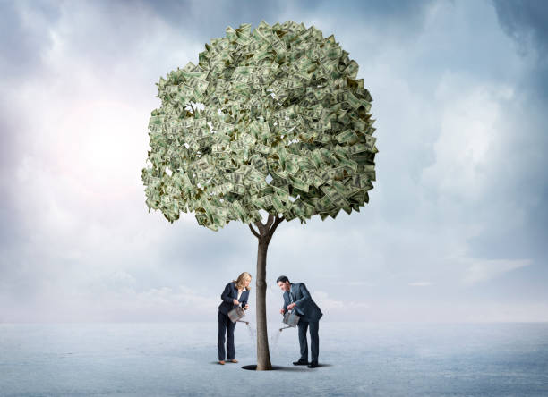 Man And Woman Watering Their Money Tree A man and a woman, both holding watering cans, water their money tree. money tree stock pictures, royalty-free photos & images