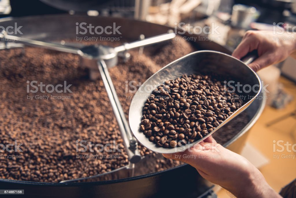 Man arms holding grains near roaster machine stock photo