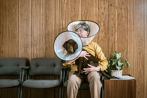 A man and his puppy dog sit in the waiting room at a veterinary clinic, both of them wearing a dog cone collar to prevent from scratching and itching at fleas.  Retro styled room and clothing.  Horizontal image with copy space.