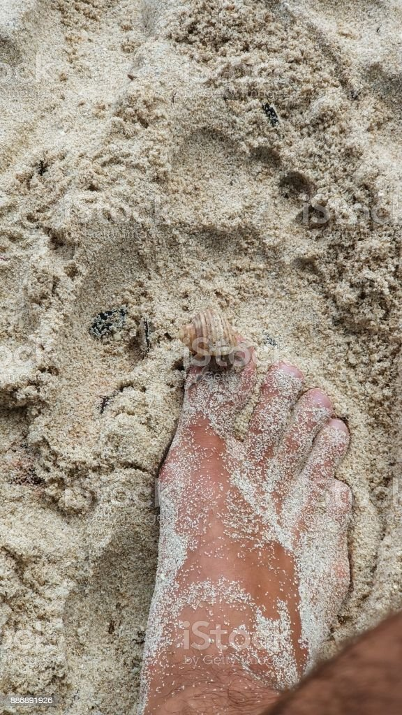 Man barefoot on sand beach with hermit crab stock photo