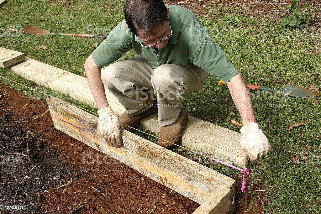 Man Building Wooden Garden Border Stock Photo - Download