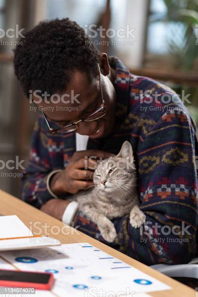 Man caressing his favourite cat while working picture id1134074070?b=1&k=6&m=1134074070&s=612x612&h=x2pzoavrbaedgnyccrewffds58qq8yywpzhkwbyfvzu=