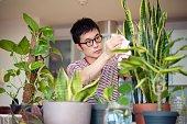 彼の屋内植物の世話をする男