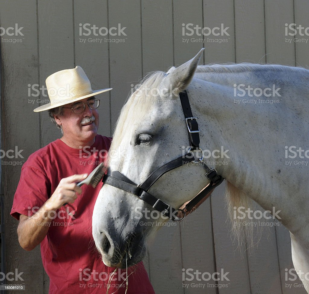 Man Caring for Horse stock photo