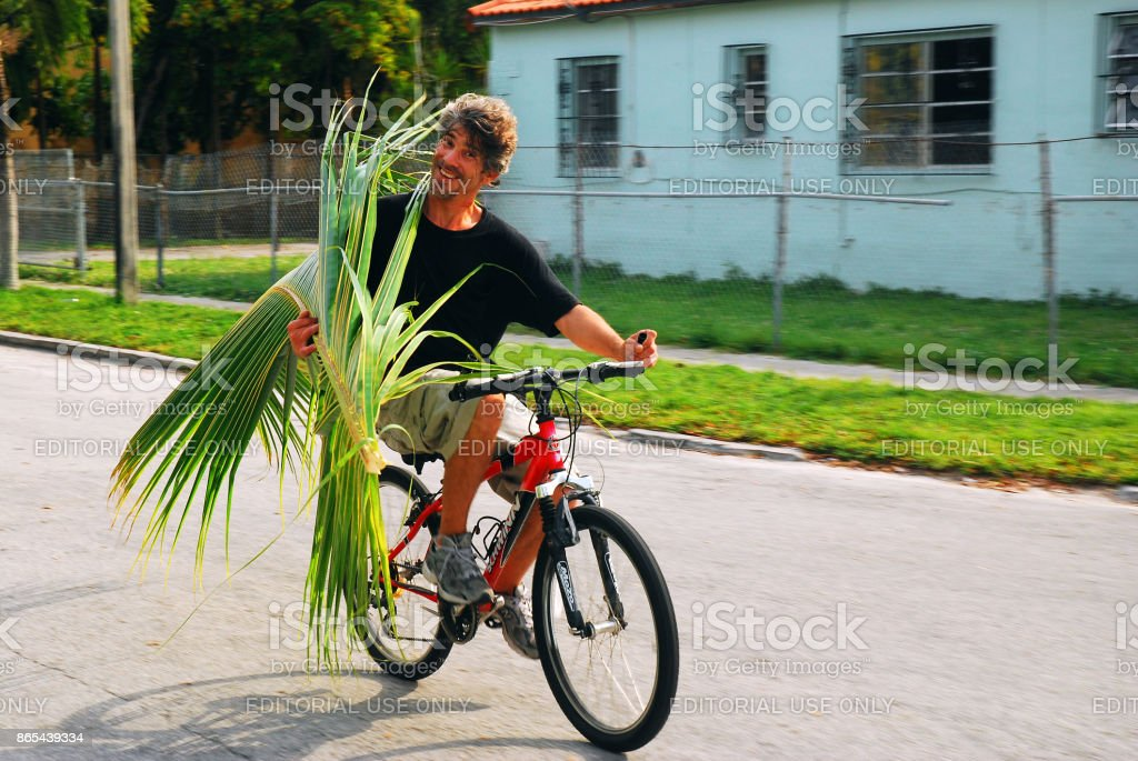 Man carrying a branch of a palm tree stock photo