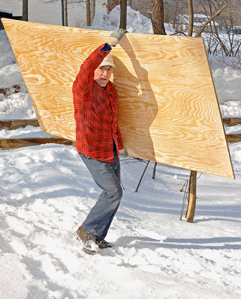 Man carrying a sheet of plywood stock photo