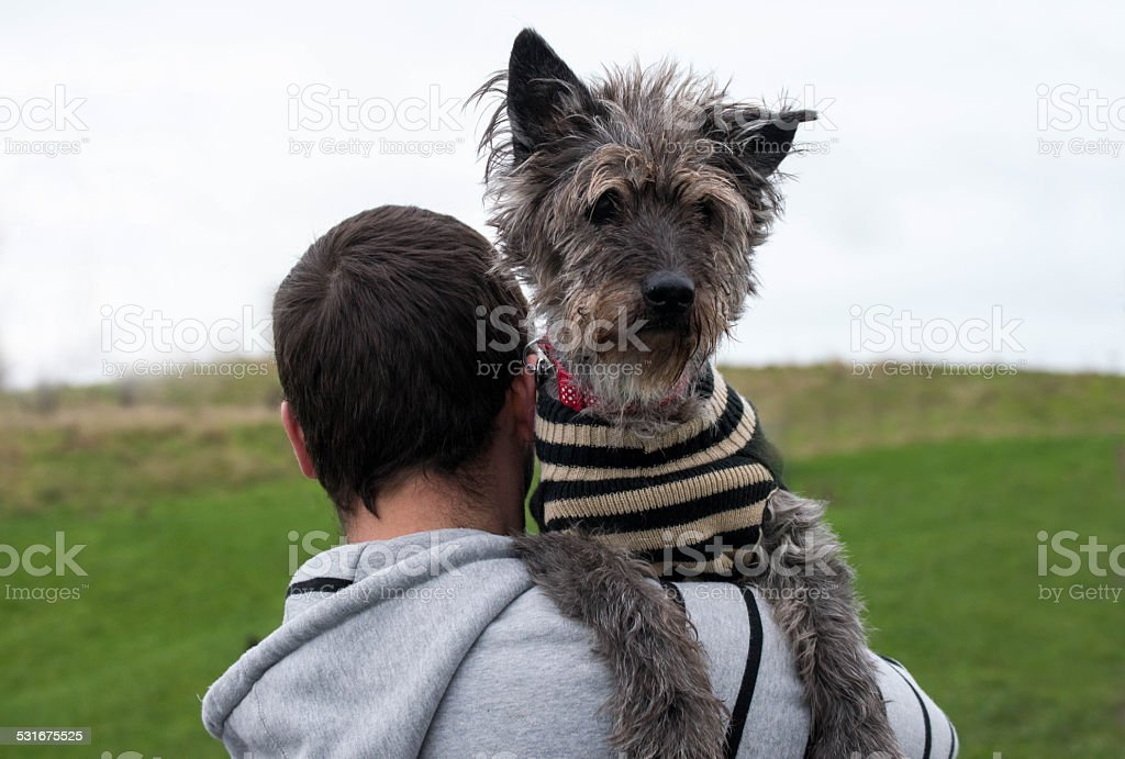 Man carrying old dog over his shoulder stock photo