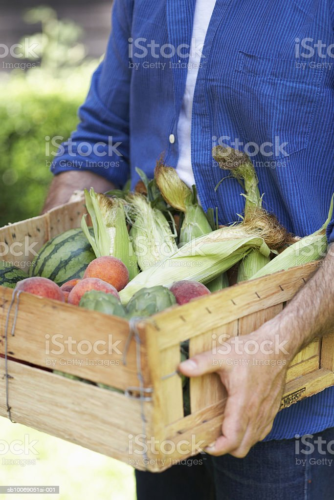 Man carrying wooden box filled with corn in husks, peaches and watermelon, close-up, mid section Lizenzfreies stock-foto