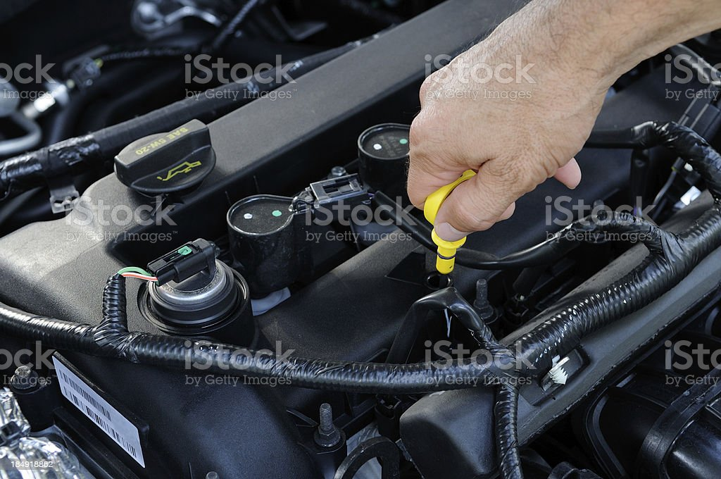 Man Checking Engine Oil Level royalty-free stock photo