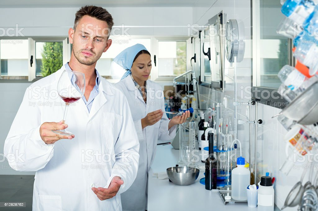 Man checking quality of wine in chemical laboratory stock photo