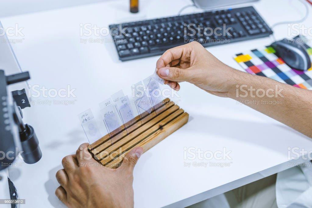Man chooses microscope slide stock photo
