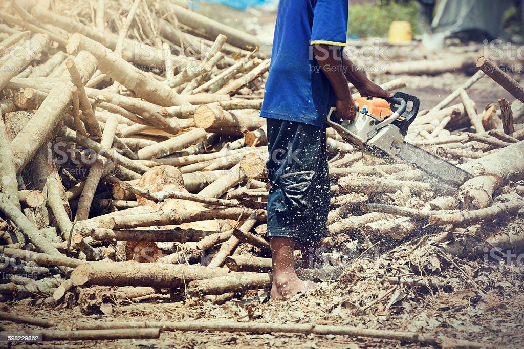Man chopping wood using a chainsaw. foto royalty-free