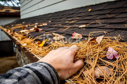A man cleaning a roof gutter full of dead leaves and pine needles during autumn in Canada.
