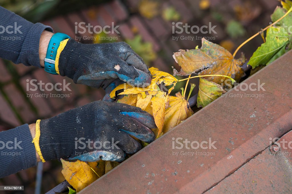 Man cleaning gutter stock photo