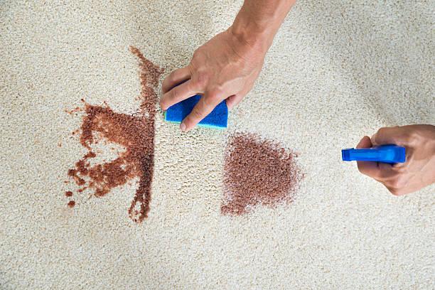 man cleaning stain on carpet with sponge - fleckenentferner stock-fotos und bilder