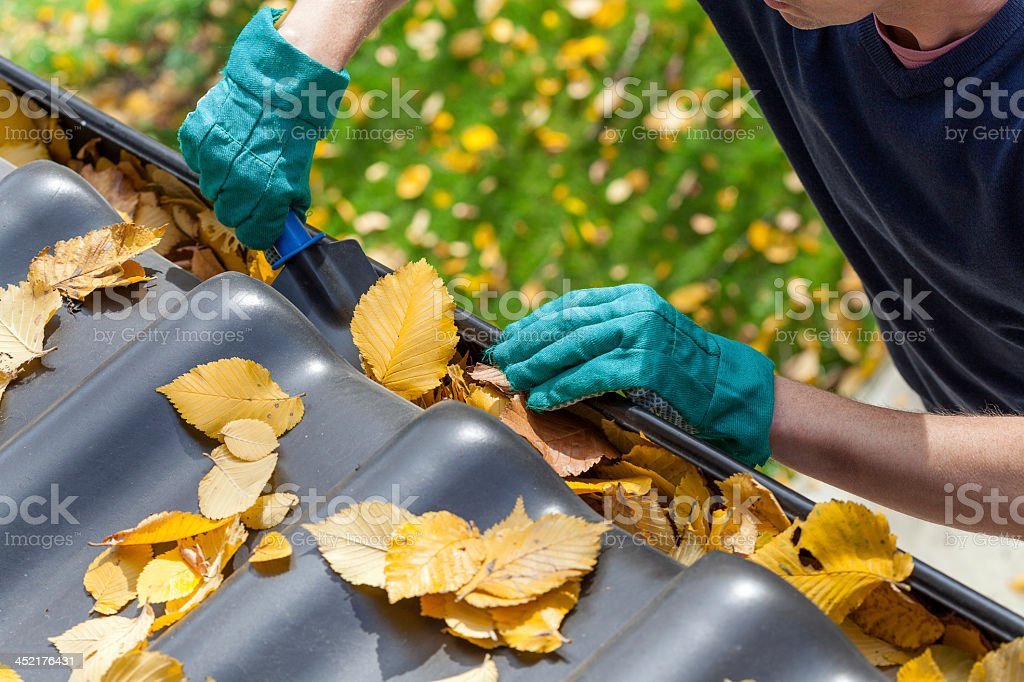 Man cleaning the gutter stock photo