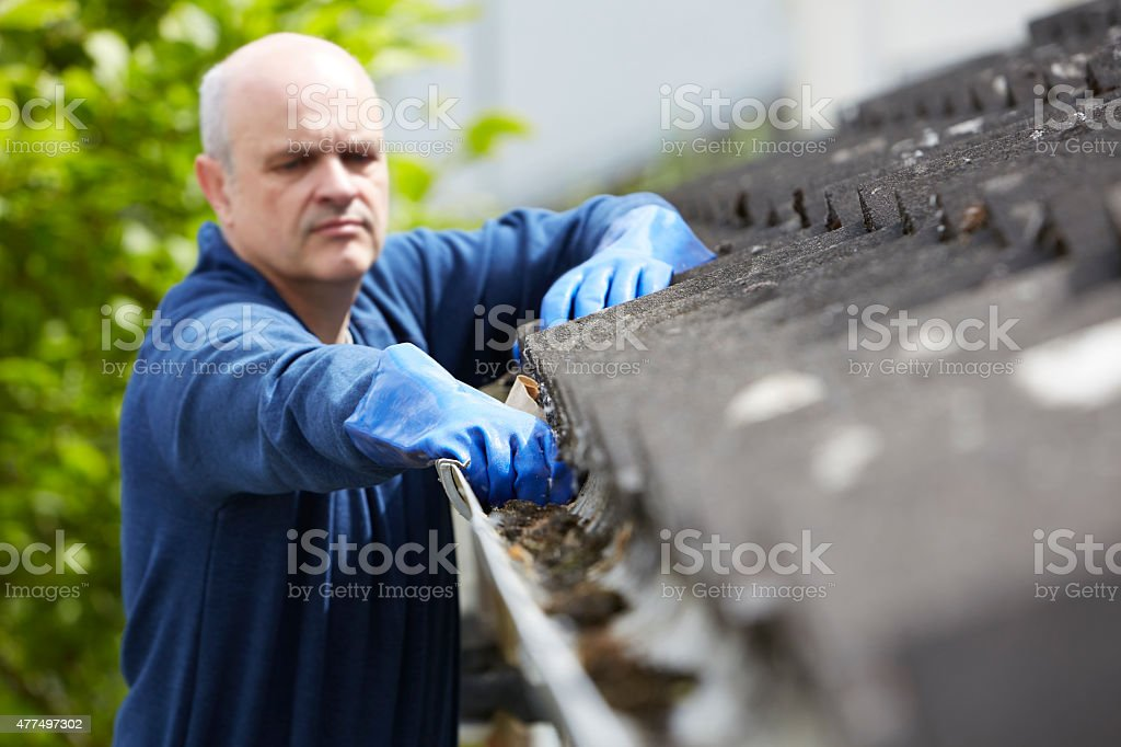 Man Clearing Leaves From Guttering Of House stock photo
