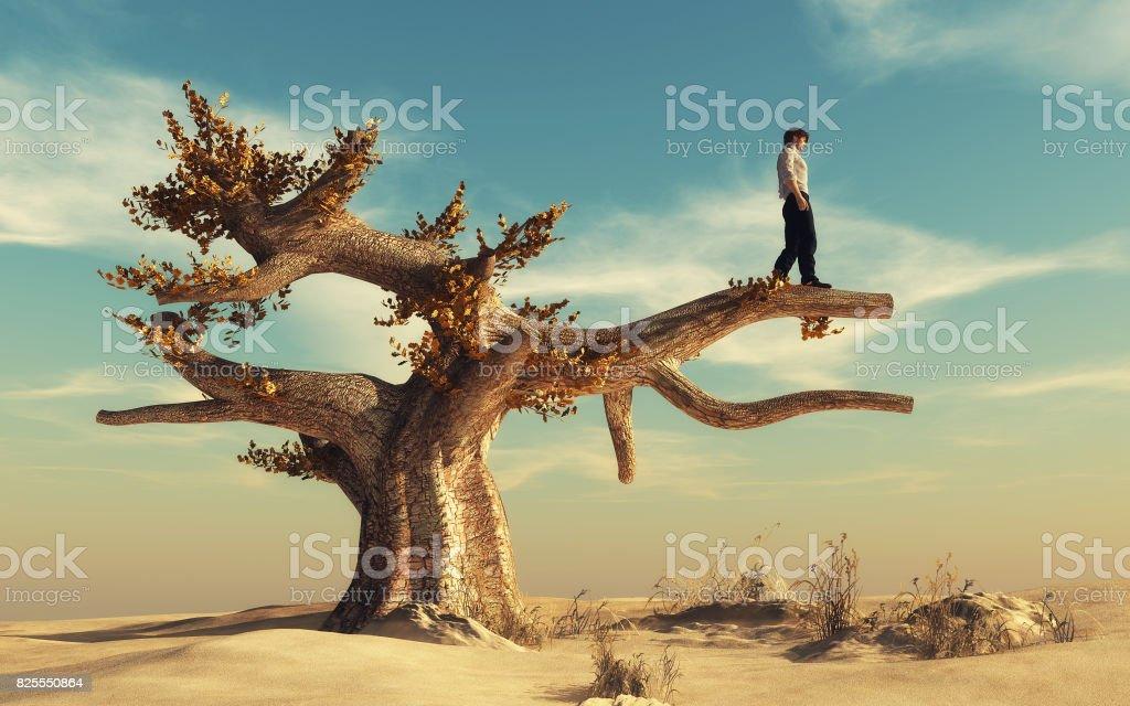 Man climbed a big tree stock photo
