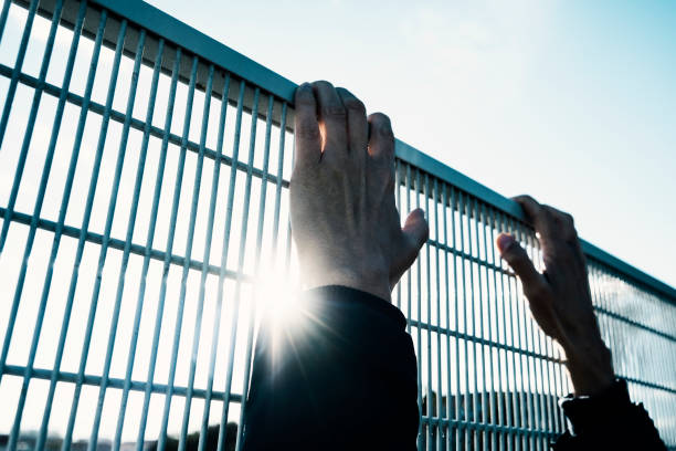 man climbing up a metal fence closeup of the hands of a man trying to climb up a metal fence, with a sumbean in the background deportation stock pictures, royalty-free photos & images