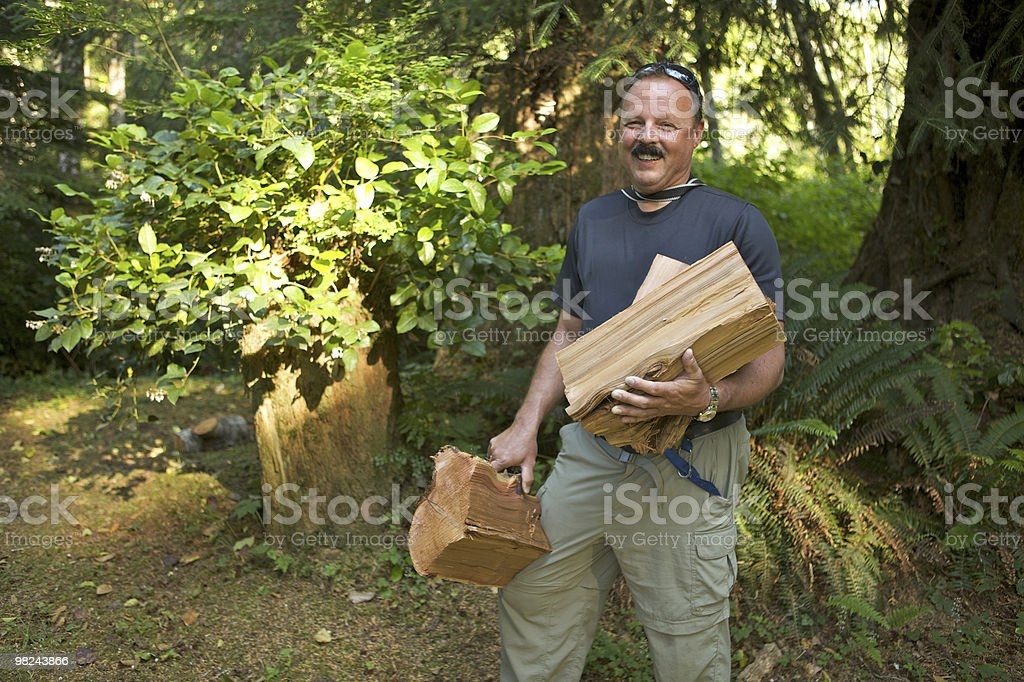 Man collecting fire wood royalty-free stock photo