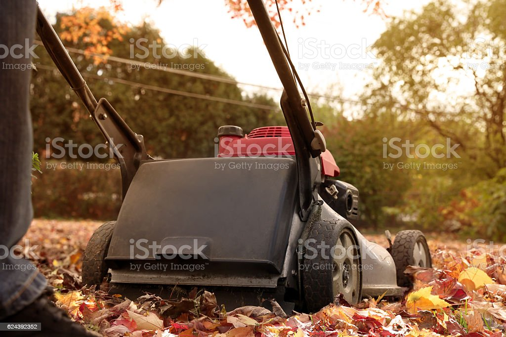 Man  collecting  old autumn leaves by Lawn Mover – Foto
