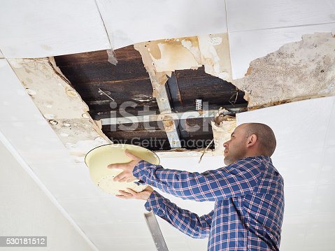 istock Man Collecting Water In basin From Ceiling 530181512