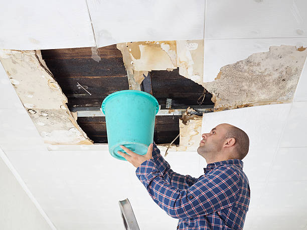 Man Collecting Water In Bucket From Ceiling stock photo