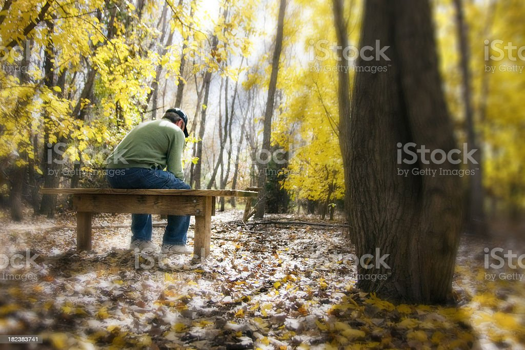 Man Contemplates Life and Faith In Quiet Sunlit Fall Forest stock photo