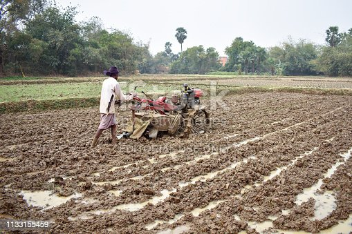 Chakta, West Bengal, India - January 28, 2019; A man cultivating Land,  paddy field, by hand tractor, near burdwan city of India