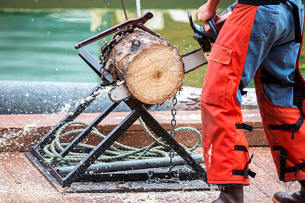 Man cutting a tree trunk with his chain saw Tree trunk being cut with a chain saw in Ketchikan, Alaska.  RM ketchikan stock pictures, royalty-free photos & images