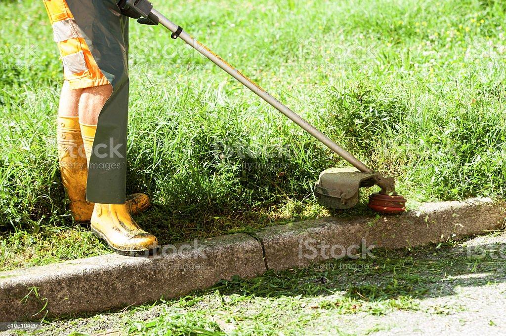 Man cutting grass with petrol mower stock photo