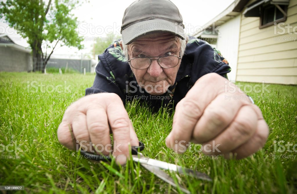 Man Cutting Grass with Scissors stock photo