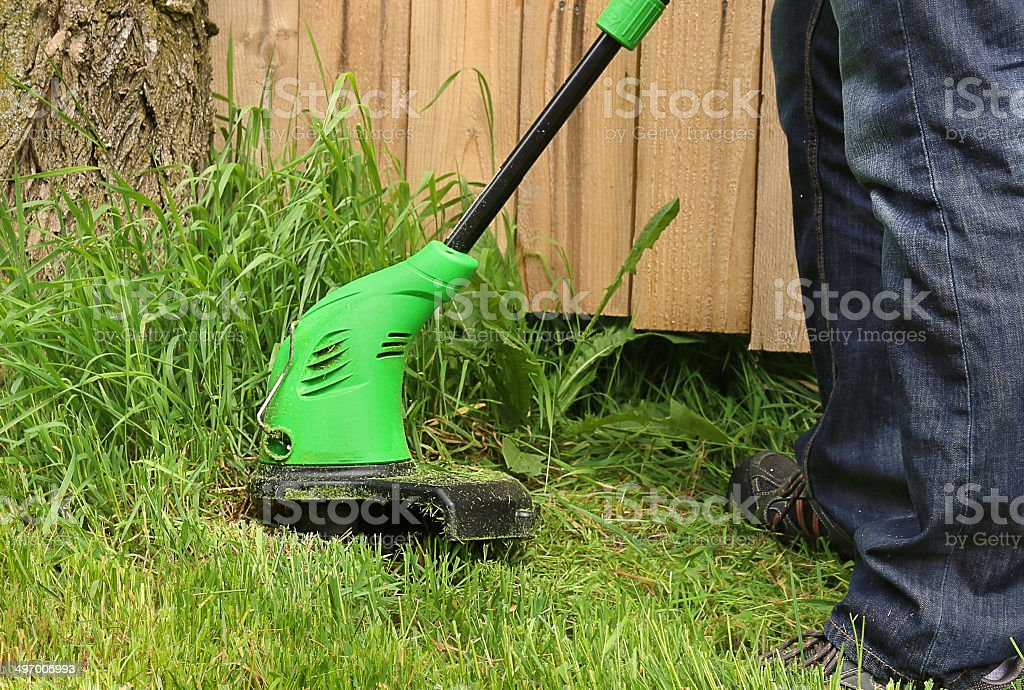 Man cutting the grass with trimmer stock photo