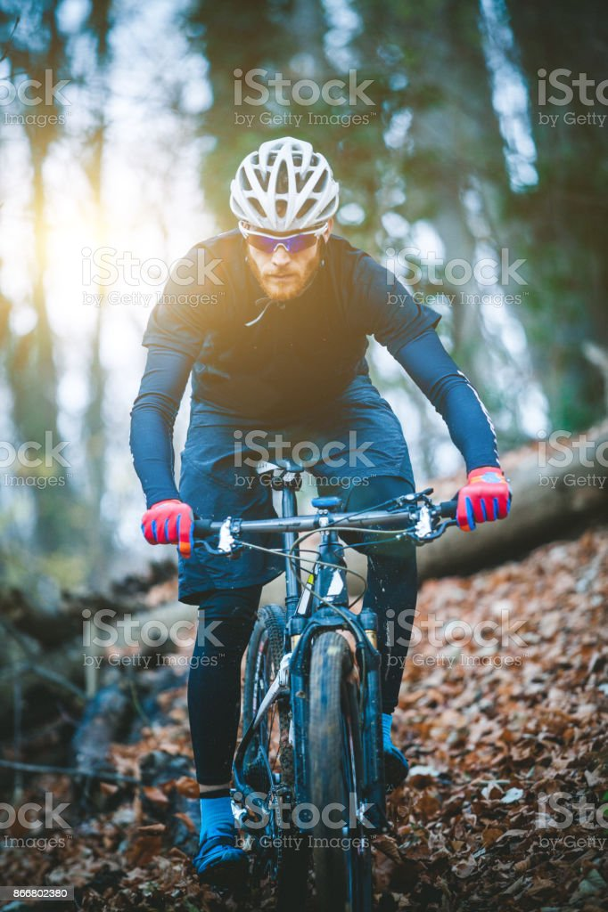 Man cycling bike through forest stock photo