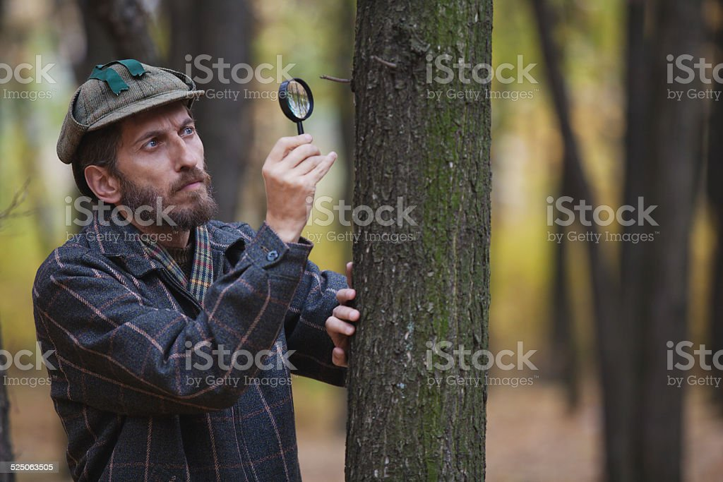 Man detective with a beard exploring a tree trunk stock photo