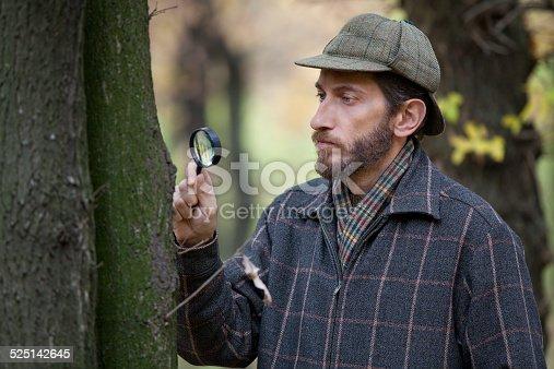 Detective Uomo Con Barba Studiando Tronco Dalbero Nella Foresta Dautunno -  Fotografie stock e altre immagini di Adulto  5c08c88eb209