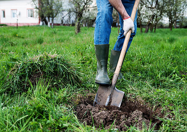 Man digs a hole Man digs a hole in the ground for planting trees shovel stock pictures, royalty-free photos & images
