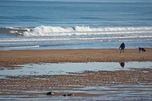 Man dog walking on a beach
